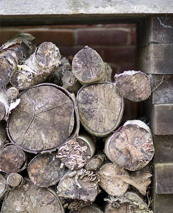 Logs stacked in a fireplace