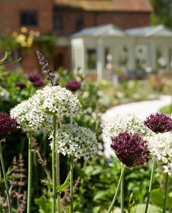 Flowers in garden behind double gabled garden room