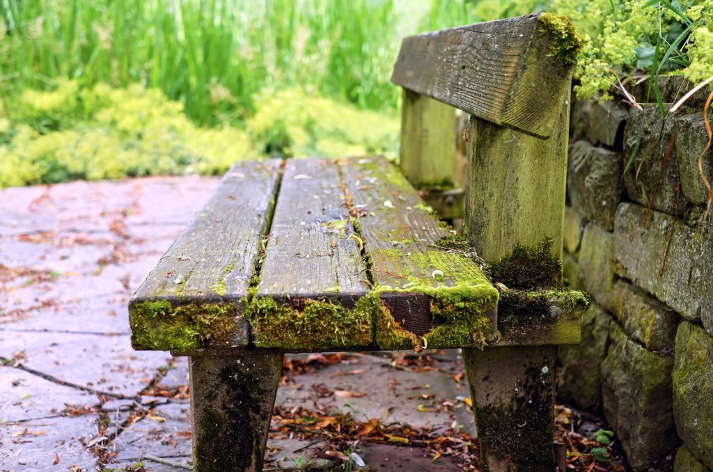 weathered wooden bench outside