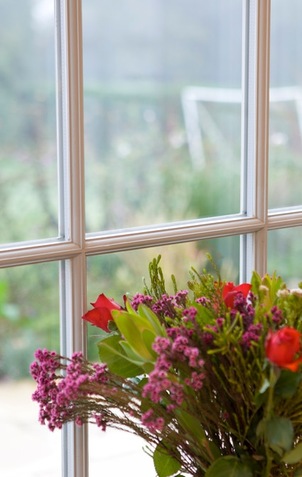 Close up of flowers in a window