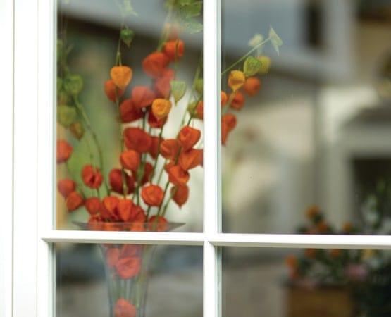 Orange flower seen through window