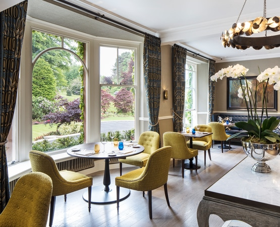 Large orangery renovation - Beautiful view from dining area