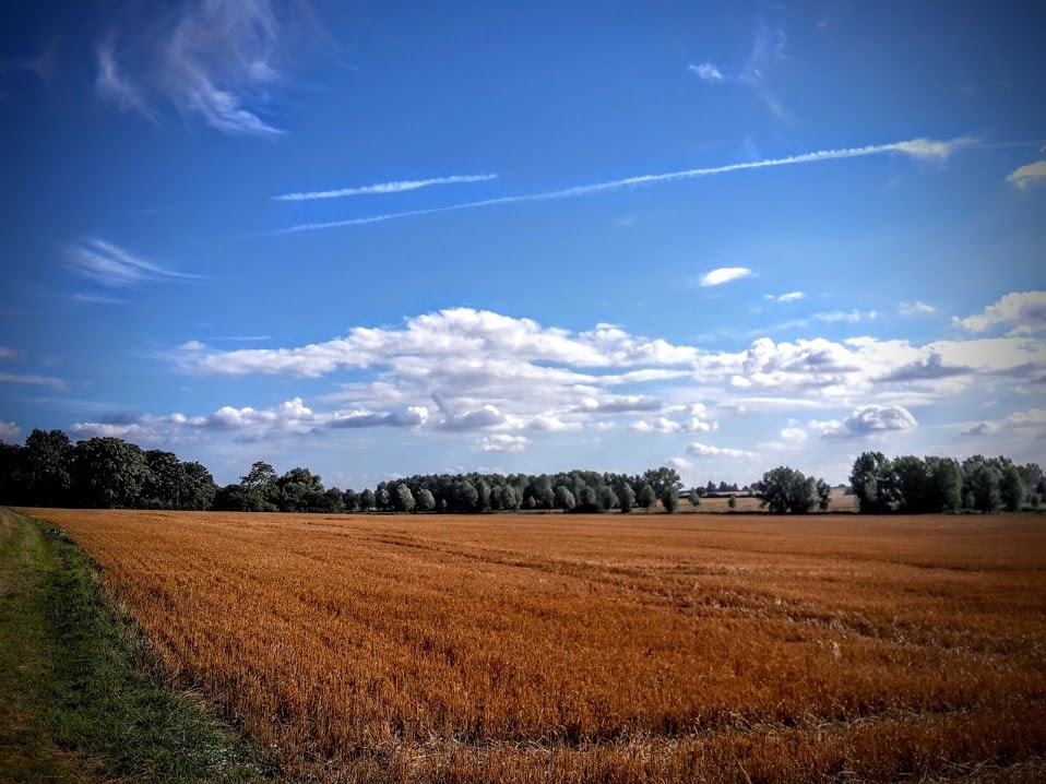 Autumnal country walks - Essex countryside - Wickham Bishops