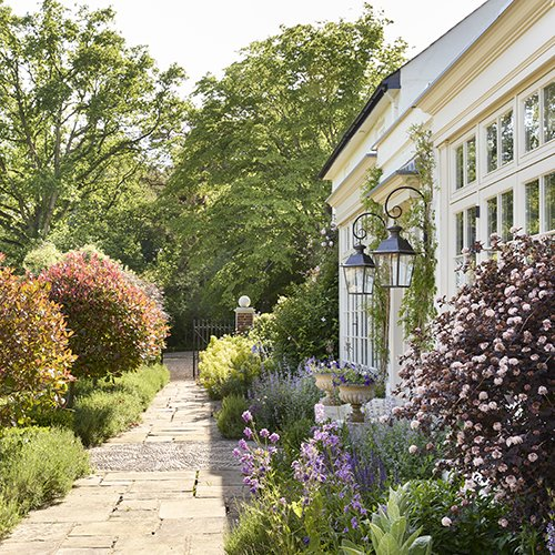 Monty Don reveals the most important gardening jobs for August